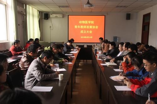 动物医学院青年教师发展协会是在学院党