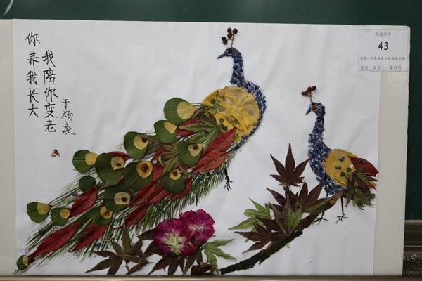 树叶粘贴画舞者-首届植物艺术作品设计大赛举办