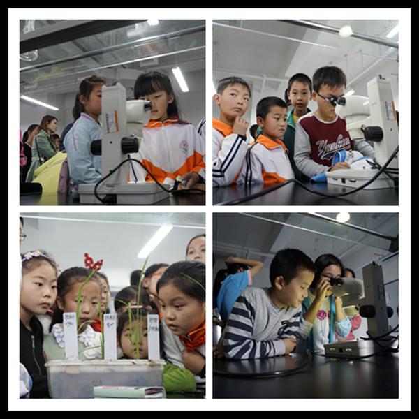 """细胞生物学学科点举办""""实验室开放日""""活动"""