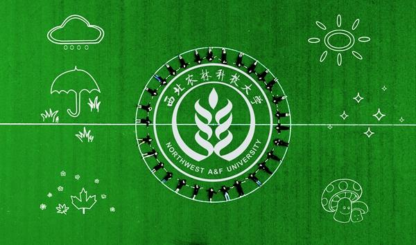 毕业季来临 西农学子用创意航拍告别母校